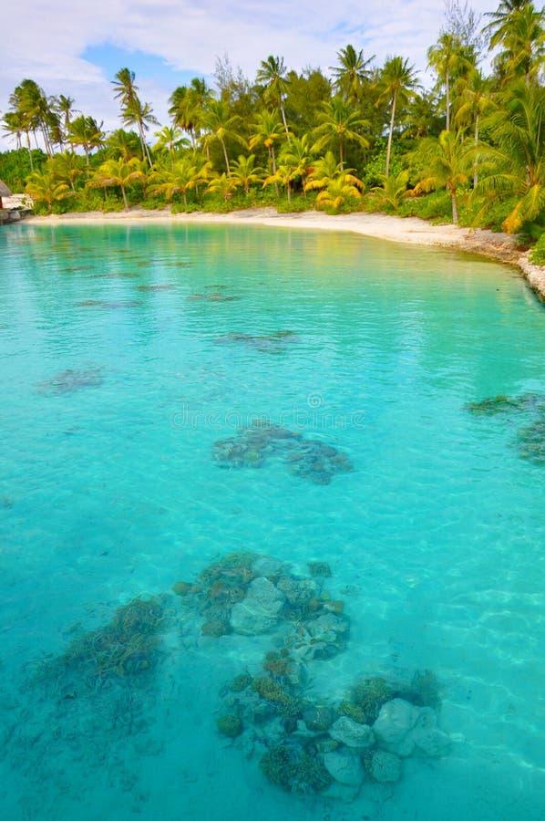 błękitny laguna obrazy stock