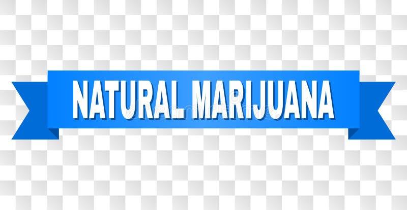 Błękitny lampas z NATURALNYM marihuana tekstem royalty ilustracja