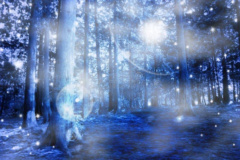 błękitny lasowa mistyczka ilustracja wektor