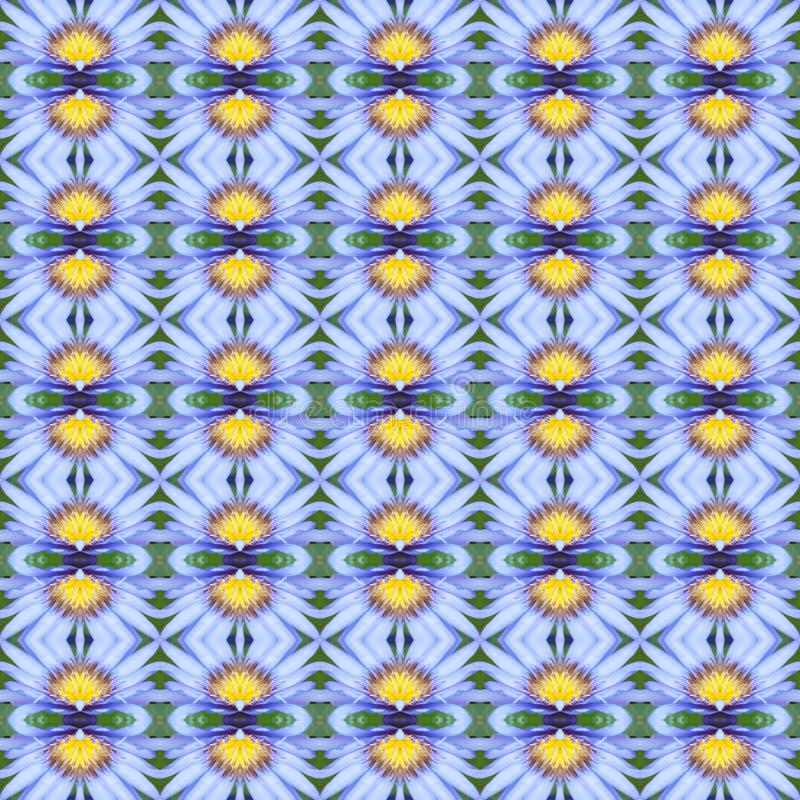 Błękitny Lotus w pełnym kwiacie bezszwowym royalty ilustracja