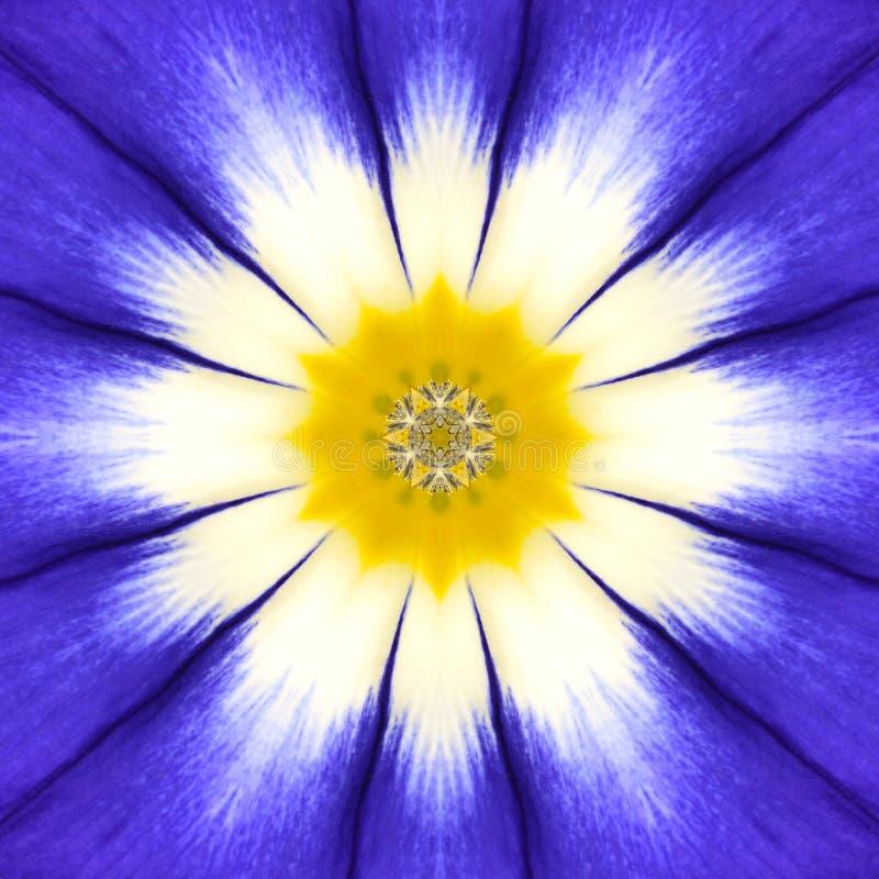 Błękitny mandala kwiatu centrum Koncentryczny kalejdoskopu projekt obrazy royalty free