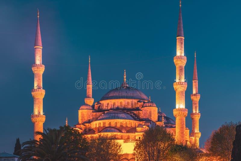 Błękitny meczet przy nocą z złotą iluminacją, szeroki widok Istanbuł w półmroku Sultanahmet Camii meczet z sześć minaretami obrazy royalty free