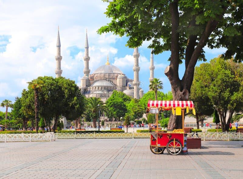 Błękitny meczetowy sułtanu Ahmet meczet, Sultanahmet kwadrat, Istanbuł, Turcja zdjęcie royalty free