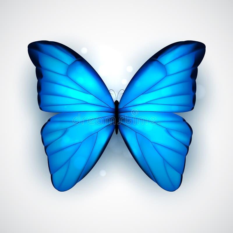 Błękitny motyl ilustracja wektor