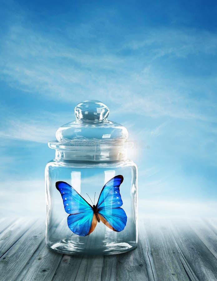 Błękitny motyl zamykający ilustracja wektor