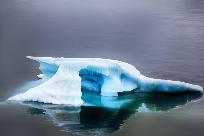 Błękitny mruk z odbiciem w spokój wodzie (kawałek góra lodowa) zdjęcia royalty free