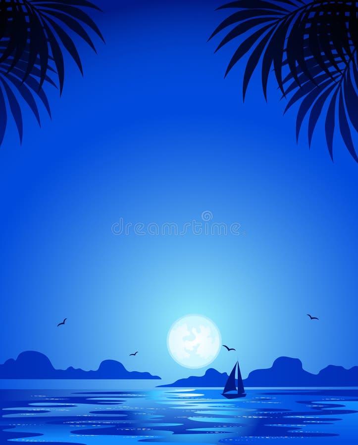 błękitny noc ilustracji