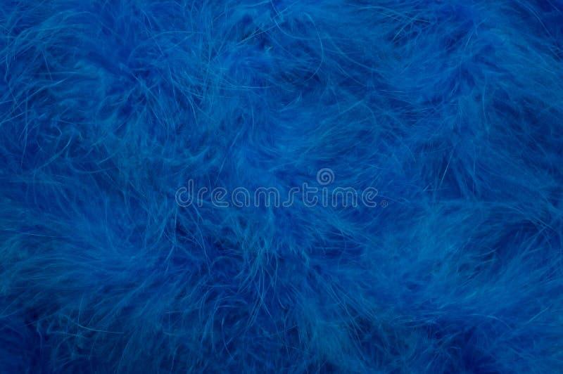 Błękitny Opierzony Tło obrazy stock