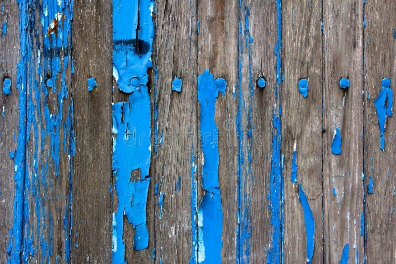 błękitny płatkowania farby ściana wietrzejący drewniany zdjęcie stock