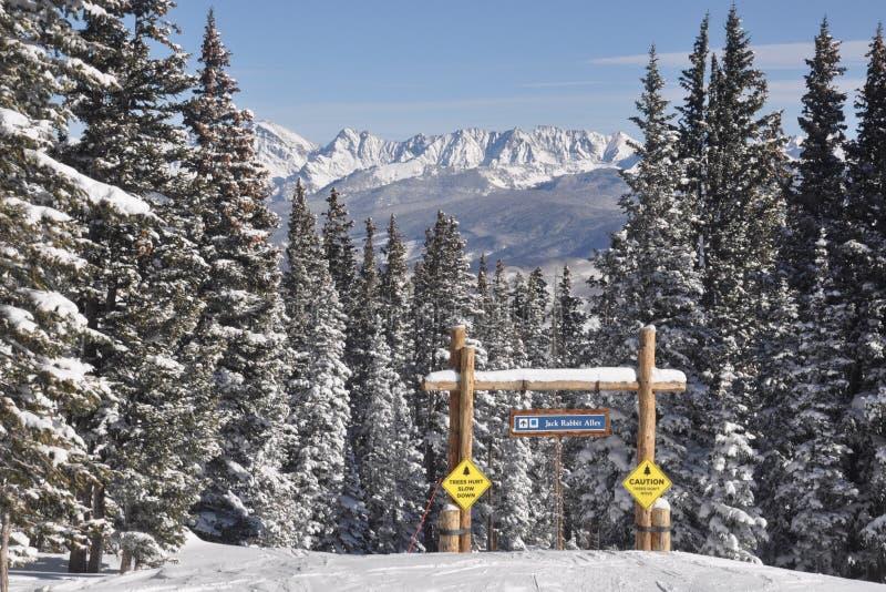 Błękitny Ptasi dzień, beaver creek, krwi pasmo, Avon Kolorado, ośrodek narciarski obraz royalty free