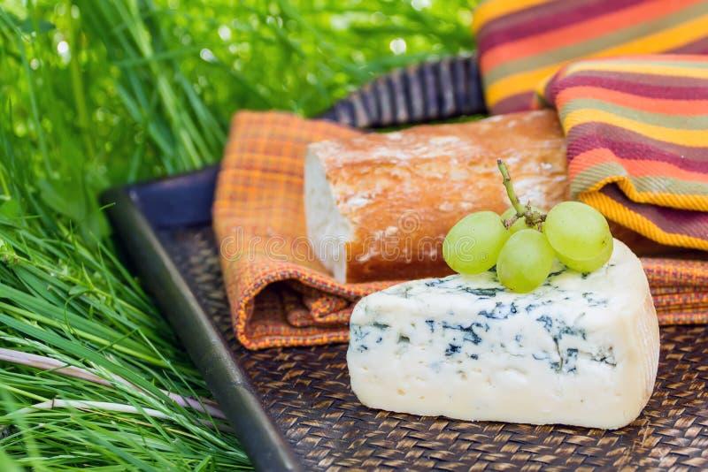 Błękitny ser z winogronami zdjęcie stock