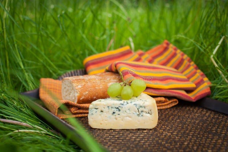 Błękitny ser z winogronami i baguette na tacy zdjęcia royalty free