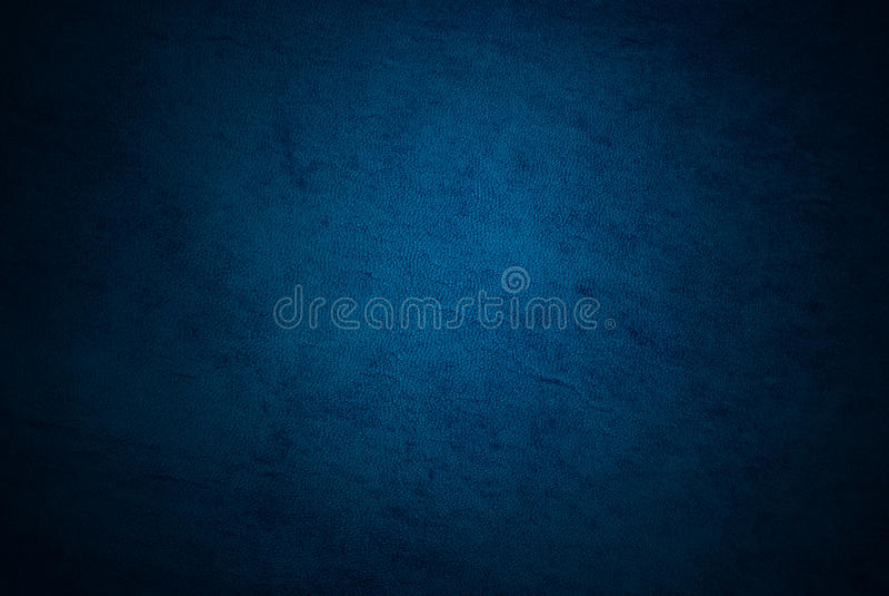 błękitny skóra zdjęcia stock