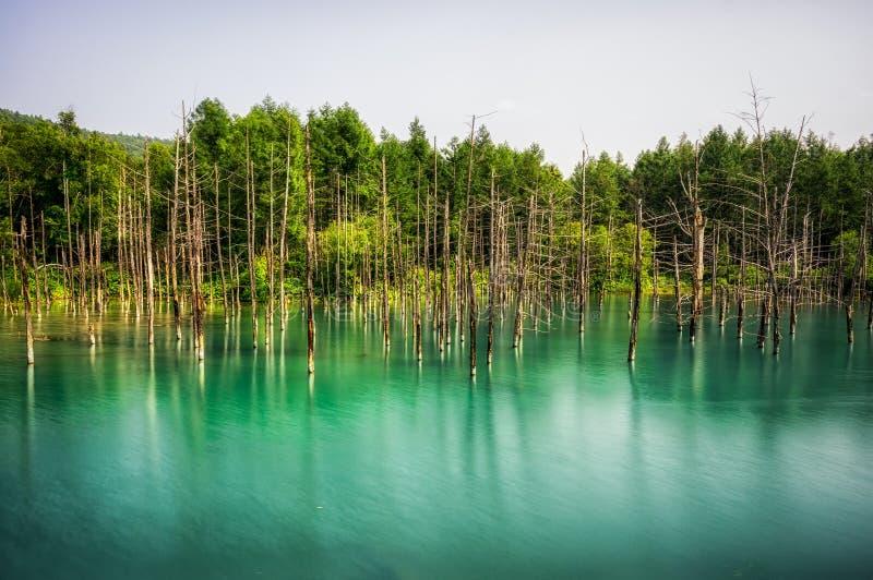 Błękitny staw (Aoiike) zdjęcia stock