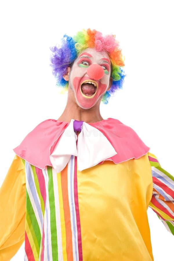 błazenu śmieszny kolorowy zdjęcia royalty free