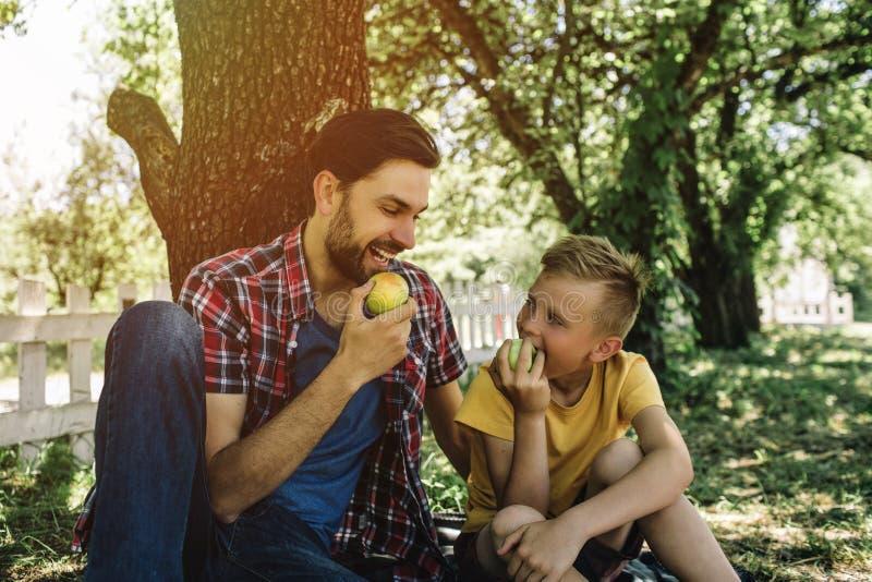 Błogi obrazek ojciec i syn siedzi wpólnie pod drzewem i je jabłka Są przyglądającym each inny i obrazy royalty free