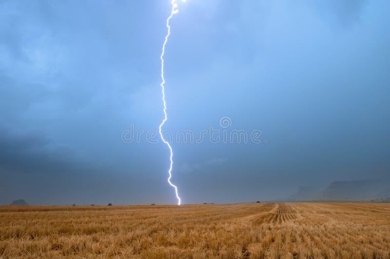 Błyskawicowa burza na wheatfield zdjęcia stock