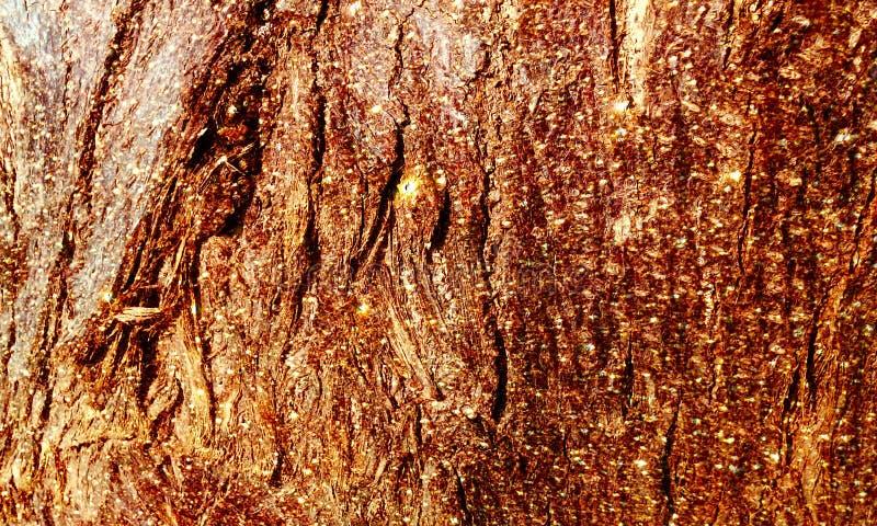 Błyskotliwości tła drewniana textured tapeta fotografia royalty free