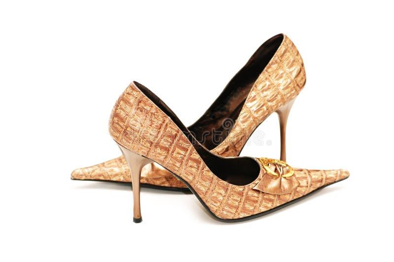 błyszcząca odizolowana but kobiety zdjęcia stock