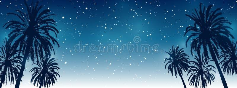 Błyszczące gwiazdy na nocnego nieba tle z drzewko palmowe sylwetkami - horyzontalny panoramiczny sztandar dla Twój lato projekta ilustracja wektor