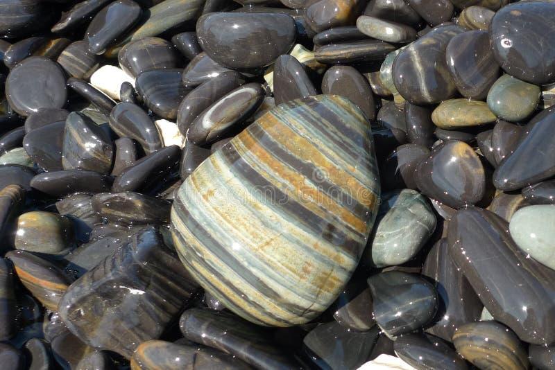Błyszczący, mokrzy otoczaki, i kamienie na Hin Ngam żwirze wyrzucać na brzeg zdjęcie royalty free
