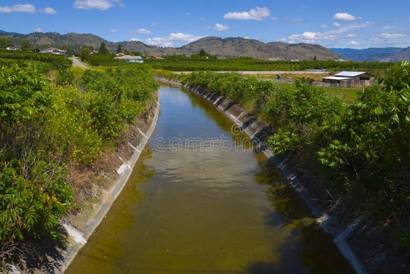 b c灌溉果树园osoyoos 库存图片