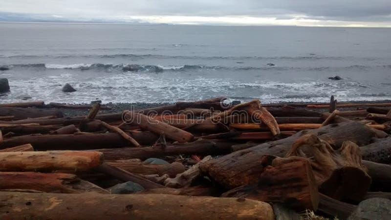 B C Spiaggia immagini stock