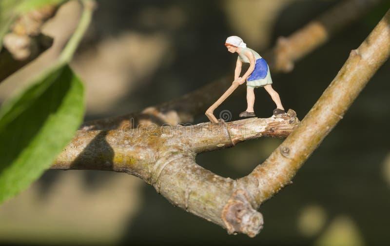 Bûcheron de femme coupant la branche de l'arbre photographie stock libre de droits