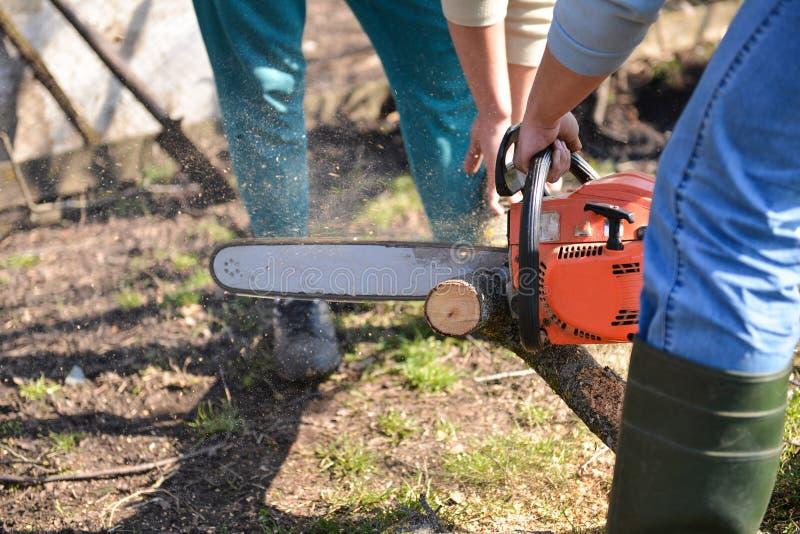 Bûcheron travaillant avec la tronçonneuse, coupant le bois photographie stock libre de droits