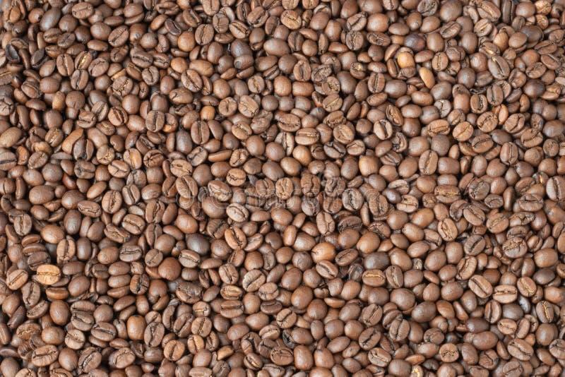 b?nor frukosterar ideal isolerad makro f?r kaffe ?ver white arkivfoto