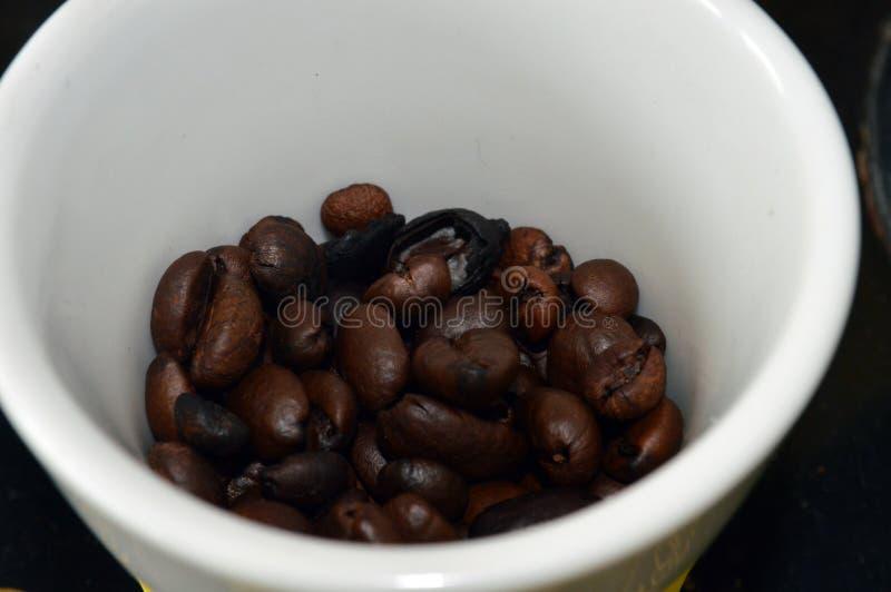 b?nor frukosterar ideal isolerad makro f?r kaffe ?ver white arkivbild