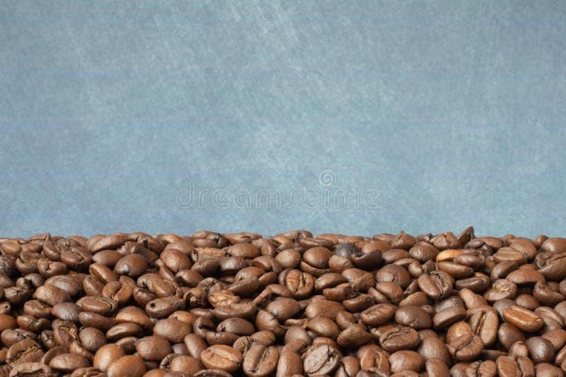 b?nor frukosterar ideal isolerad makro f?r kaffe ?ver white royaltyfria bilder
