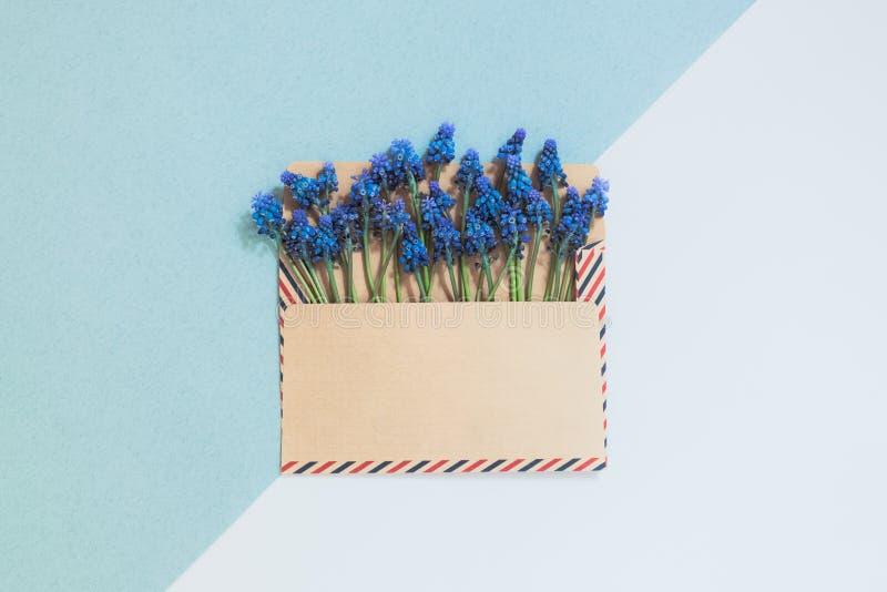 B??kit kwitnie w kopercie fotografia royalty free