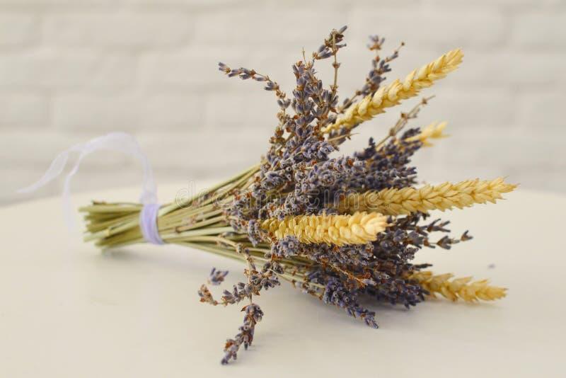 B?ndel Lavendel auf wei?em Hintergrund stockfotografie