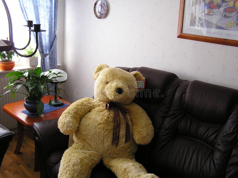 <b>Orso dell'orsacchiotto</b> immagini stock