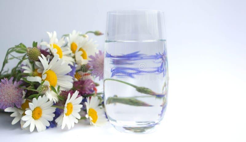 B ouquet van wildflowers ligt naast een glas drinkwater Een boeket van madeliefjes, klaver bloeit, rode papavers en blauw stock foto's