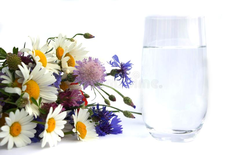 A b ouquet of wildflowers lies next to a glass of drinking water. A bouquet of daisies, clover flowers, red poppies and blue royalty free stock photography