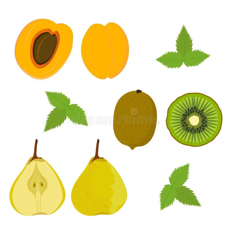 B?r och frukter Aprikos kiwi, päron på en vit bakgrund vektor royaltyfri illustrationer