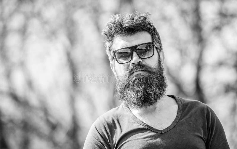 B?rtiger Mann im Freien Bartsorgfalt und -friseursalon Reifer Hippie mit Bart b?rtiger Mann mit dem ?ppigen Haar Frei und gl?ckli lizenzfreie stockfotos