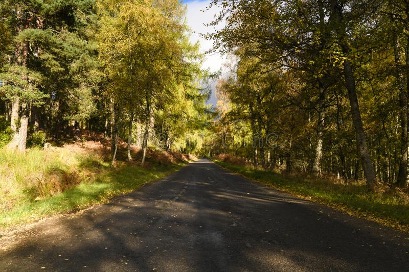 B9102. The B9102 in Speyside, Scotland, in all her autumnal glory. 20 October 2018 stock photography