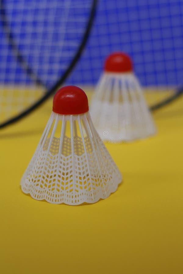 b?verskinn Två fjäderbollar och racket för badminton två royaltyfria bilder