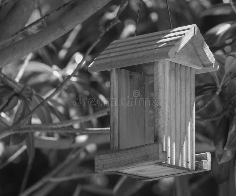 B&W鸟饲养者 库存图片
