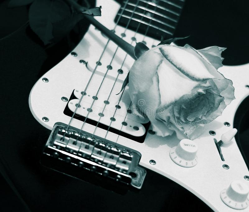 B&W αυξήθηκε και κιθάρα στοκ φωτογραφία με δικαίωμα ελεύθερης χρήσης