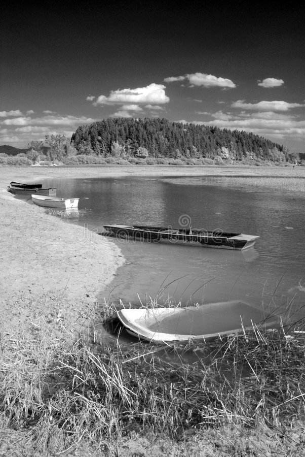 Boats under water. Old abandoned boats under water with trees, grass and sand - converted in black and white for more drama - Cerknica lake stock photos