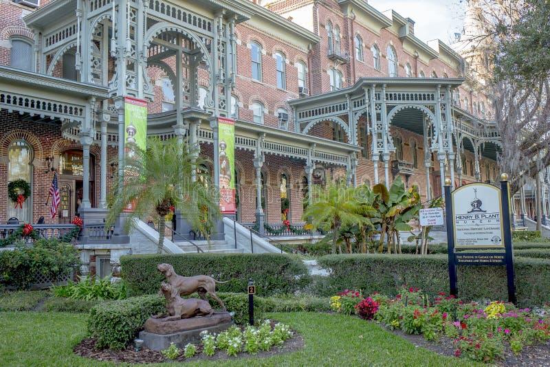 b w centrum Florida henry muzealna roślina Tampa Rośliny muzeum zdjęcie stock
