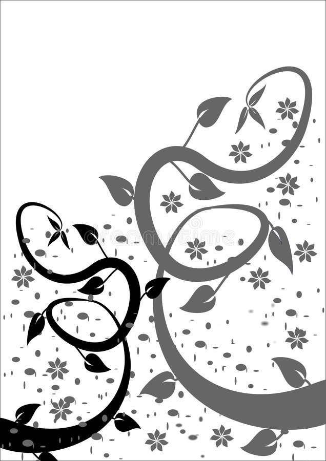 B & W Floral Background stock illustration