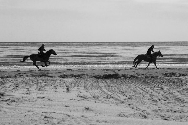 Horses on the beach. People riding two horses on the beach in backlight - converted in black and white for more drama - Lignano (Italy royalty free stock images