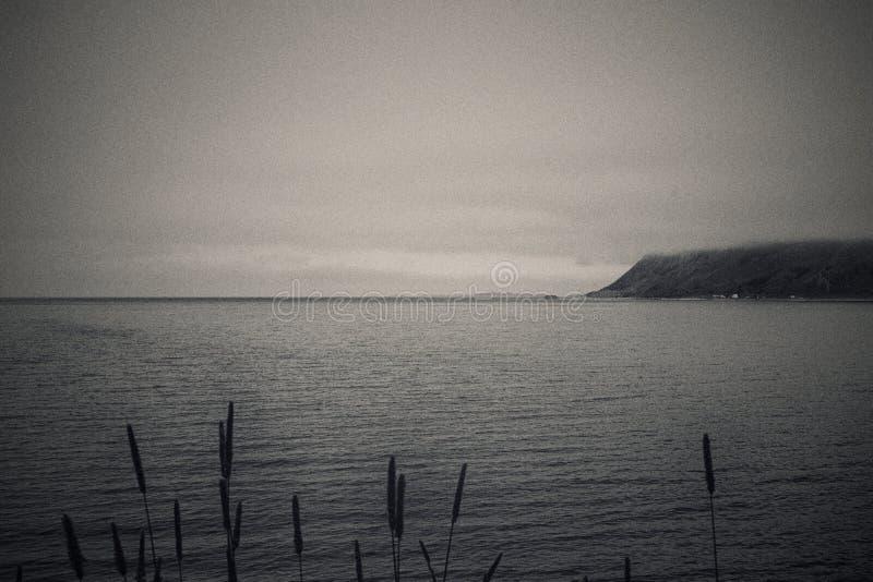 B&W-Landschaft lizenzfreie stockfotografie
