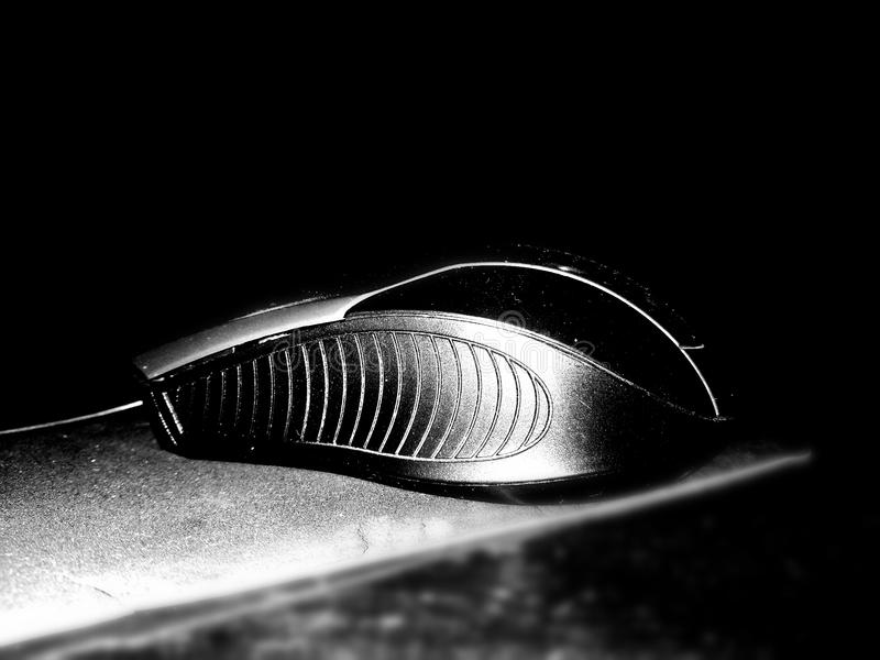 B/W Mouse stock images
