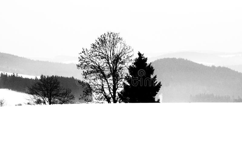 B&W siluets royalty free stock images